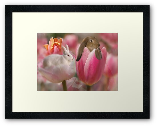 Bunny Blossoms by Elaine  Manley