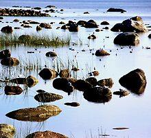 Rocky beach by Bluesrose
