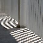 Corridor - Light & Shade  by Padmakar Kappagantula