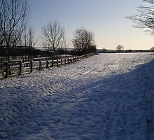 Snow Scene in Hertfordhire by puddingpiesjb
