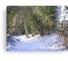 A snowy walk in the Hertfordshire countryside Canvas Print