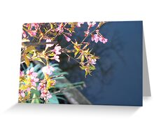 spring call Greeting Card
