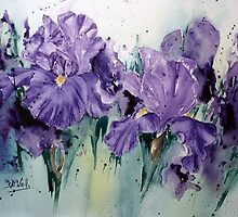 Wacky Iris-watercolour on arches 140 not by Bev  Wells