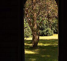 Doorway to Paradise..... by HeavenlyCanvas