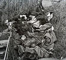 Gypsy Dogs, Let Sleeping Dogs Lie by Sue Nichol