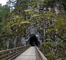 Othello Tunnels Trail by Jeff Ashworth & Pat DeLeenheer