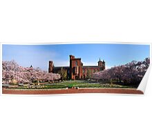 The Smithsonian Institution - Washington D.C. Poster