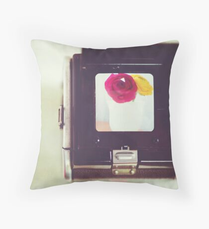 Through the Viewfinder Throw Pillow