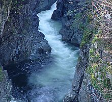 Sooke River Gorge (1) by Jann Ashworth