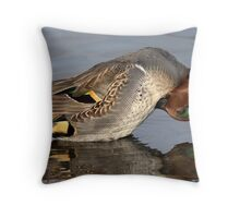 Mr Teal Takes A Bow / Green Winged Teal Throw Pillow