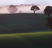 A Little Piece Of Tuscany by Paul Whittingham