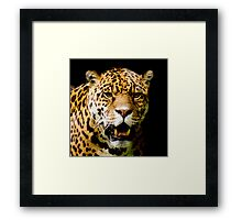Beautiful Eyes Framed Print