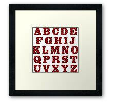 Letters with ladybird pattern. Framed Print