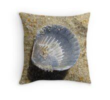 Macro Scallop Shell Throw Pillow