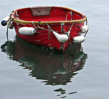 Small Red Boat by lynn carter