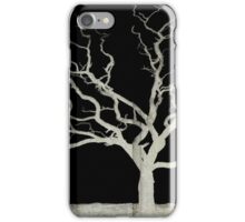 Stark Reality iPhone Case/Skin