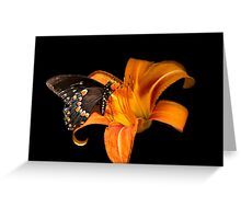 Black Beauty Butterfly Art Greeting Card