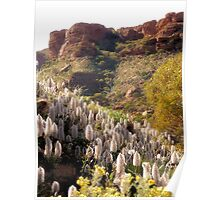 Steps to Kings Canyon Poster