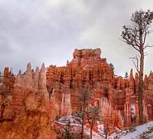 Bryce Canyon Morning by rjcolby