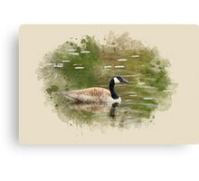 Canada Goose Watercolor Art Canvas Print
