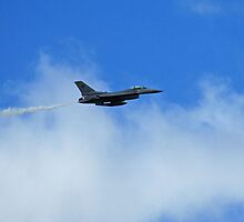 F-16 Cruising by TeaCee