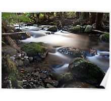 Taggerty River Poster