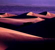 California Dunes at Sunrise - #0038 by ©  Paul W. Faust