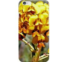 More Spring Gold iPhone Case/Skin