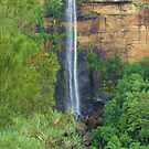 Fitzroy Falls from Jersey Lookout by Michael John