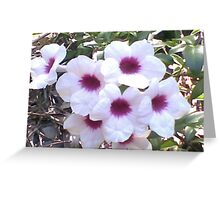 White &Purple Flowers Greeting Card