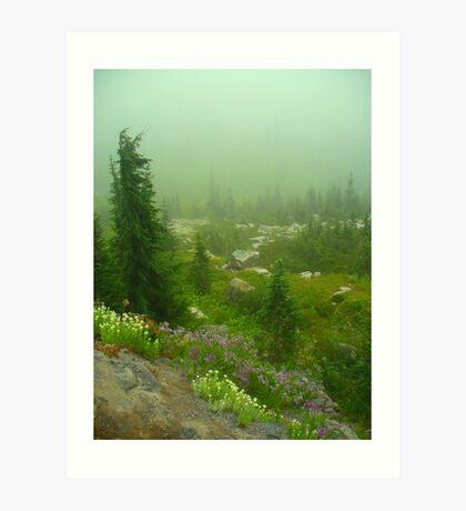 Mt. Rainier's Beauty Art Print