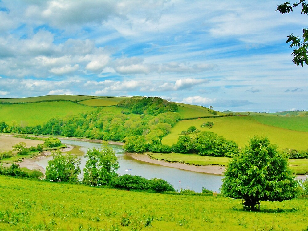 River Dart  by Janice Petitjean