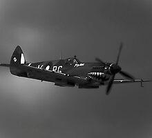 Wartime Spit by Allen Gray
