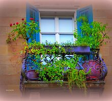 Artsy Window by Charmiene Maxwell-Batten