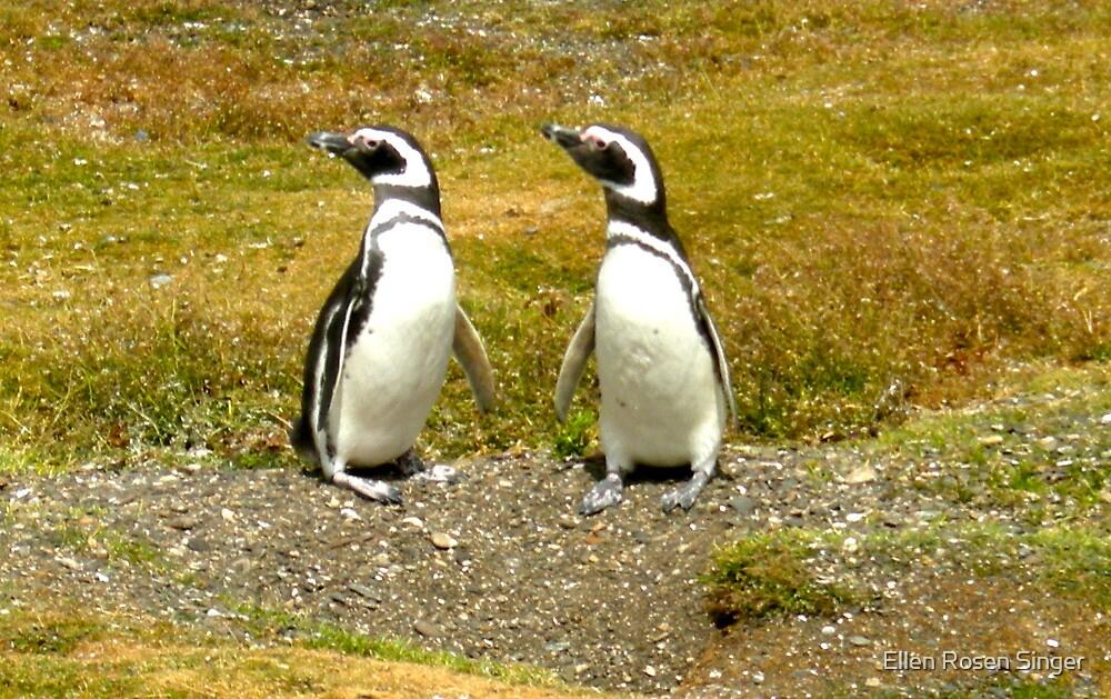 Penguin Friends by Ellen Rosen Singer