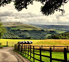 Country lane with view of Stoodley Pike by David  Barker