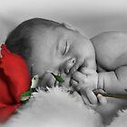 Love Always by Michelle Shoosmith