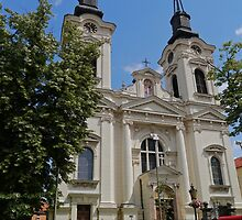 Cathedral of St Nicholas, Sremski Karlovci, Serbia by Margaret  Hyde