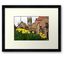 Helmsley Daffodills Framed Print