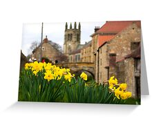 Helmsley Daffodills Greeting Card