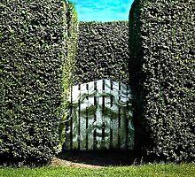The Perilous Gate by Richard Earl