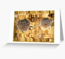 Weathered Seed Pod Artwrk Greeting Card