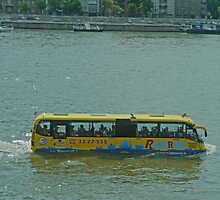 River bus, Budapest, Hungary by Margaret  Hyde