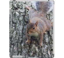 Squirrel Again iPad Case/Skin