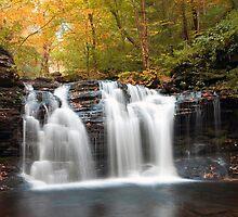 Seasons Changing At Wyandot Falls by Gene Walls