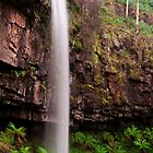 Bindaree Falls, Victoria by Paul Oliver