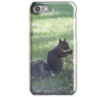 I see you Squirrel iPhone Case/Skin