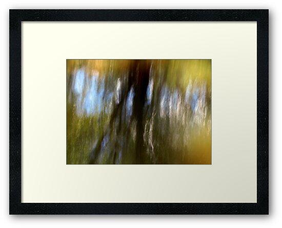 River Reflections by Kitsmumma