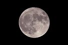 My Super Full Moon ...Too by Gene Walls