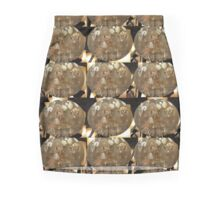 The Glass Lamp Mini Skirt